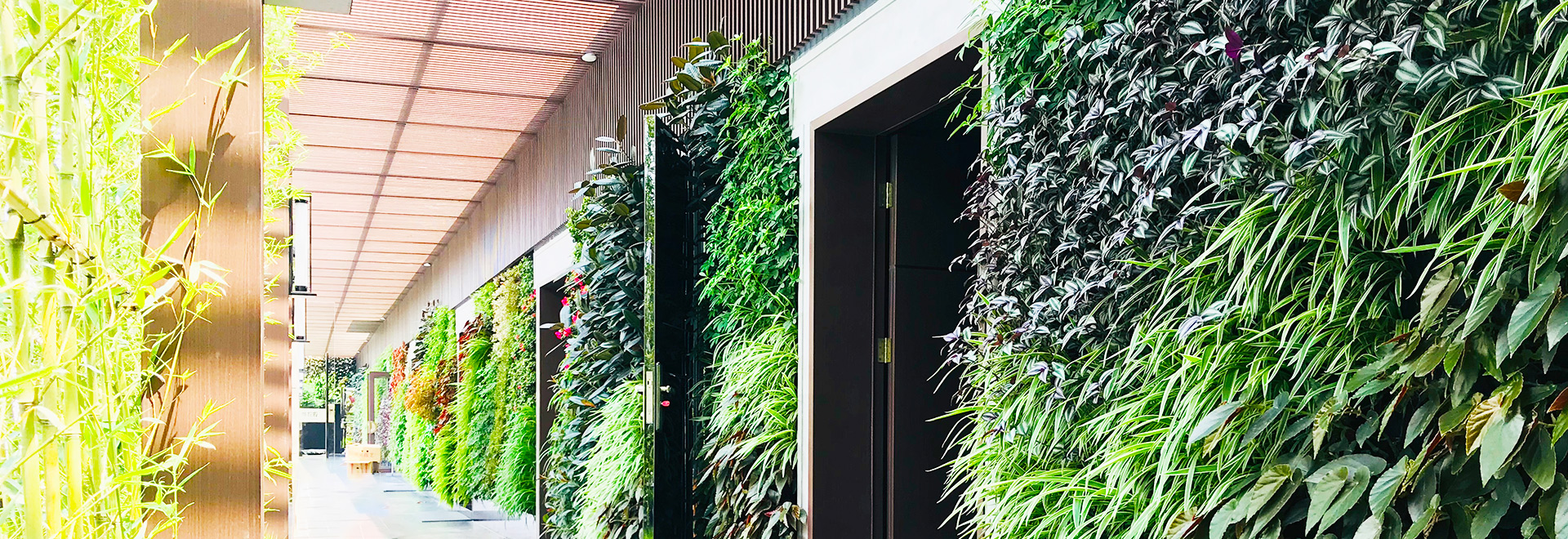 深圳植物墙公司