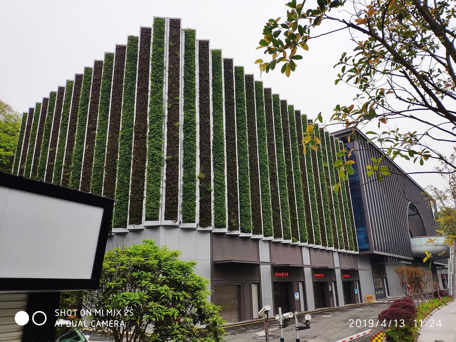 温州万安山停车场立体植物墙